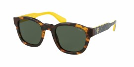 Gafas de sol Polo Ralph Lauren PH4159 535171