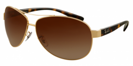 Gafas de Sol Ray-Ban RB3386 ACTIVE LIFESTYLE 001/13 ARISTA - BROWN GRADIENT